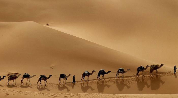 Пустыня Аравии