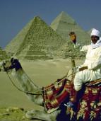 негры и арабы