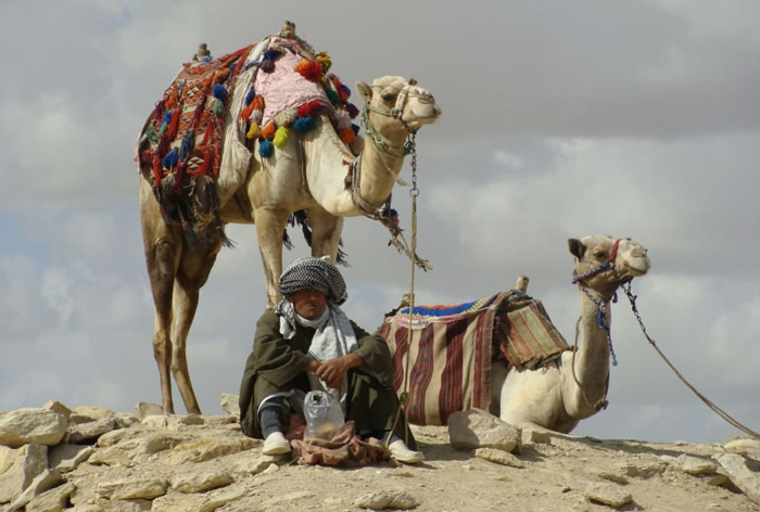 бедуин Египта