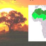 Арабы в Северной Африке