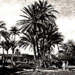 Обычаи арабов